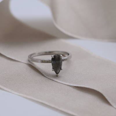 Gold ring with salt and pepper diamond and side diamonds ROXANE